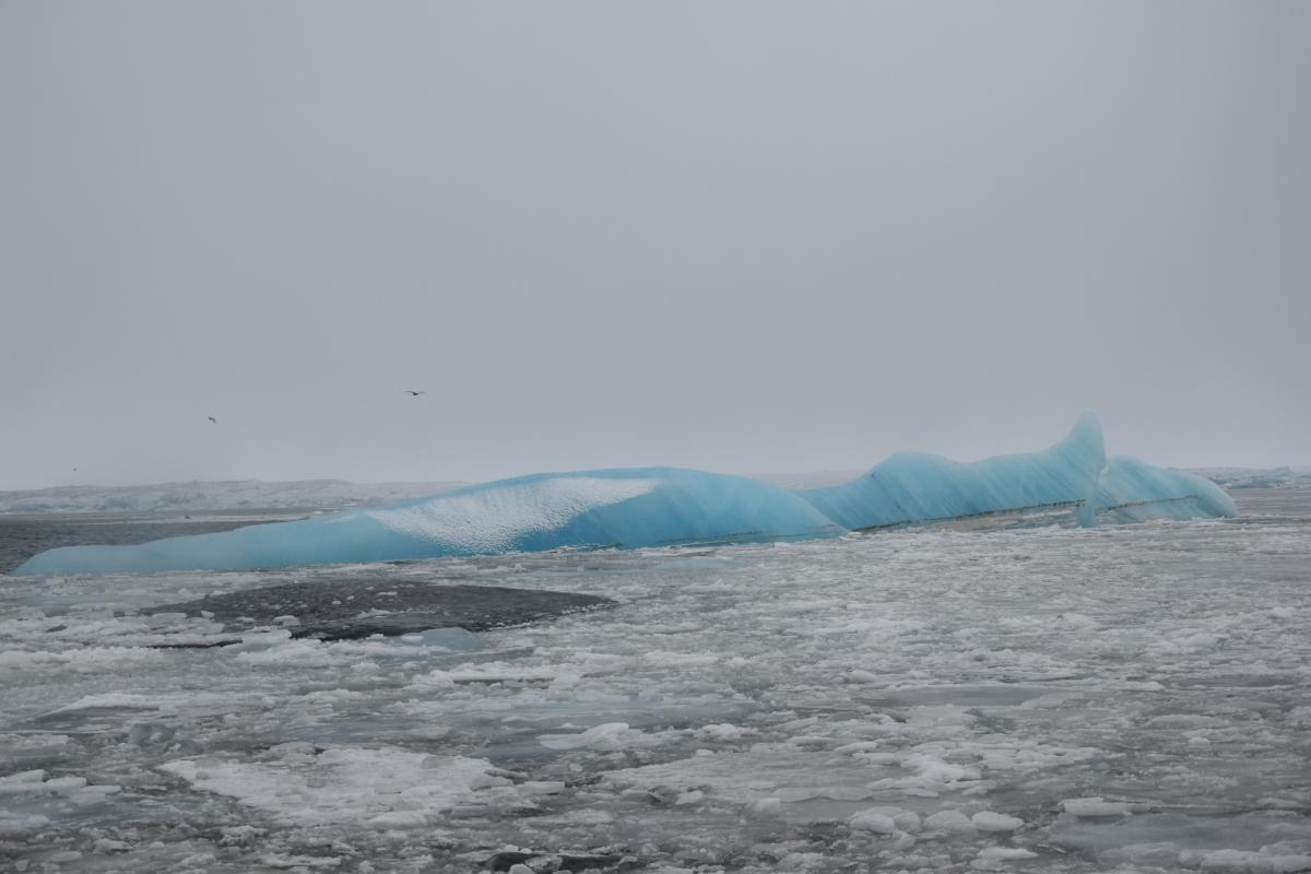 Un ricordo di viaggio di The Half Hermit: gli iceberg della laguna degli iceberg di Jökulsárlón in Islanda