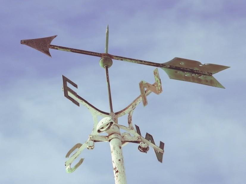 Il segnavento come simbolo del modo in cui The Half Hermit guarda il mondo: vivere in relazione a anziché come parte di.