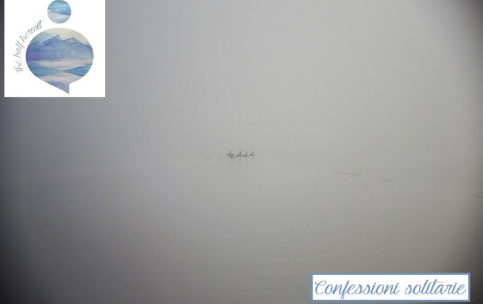Fotografia scattata da The Half Hermit in una mattina di nuvole basse nei Fiori Occidentali d'Islanda: un piccolo stormo di anatre selvatiche sembra nuotare sospesa nella nebbia. Clima perfetto per confessioni solitarie.