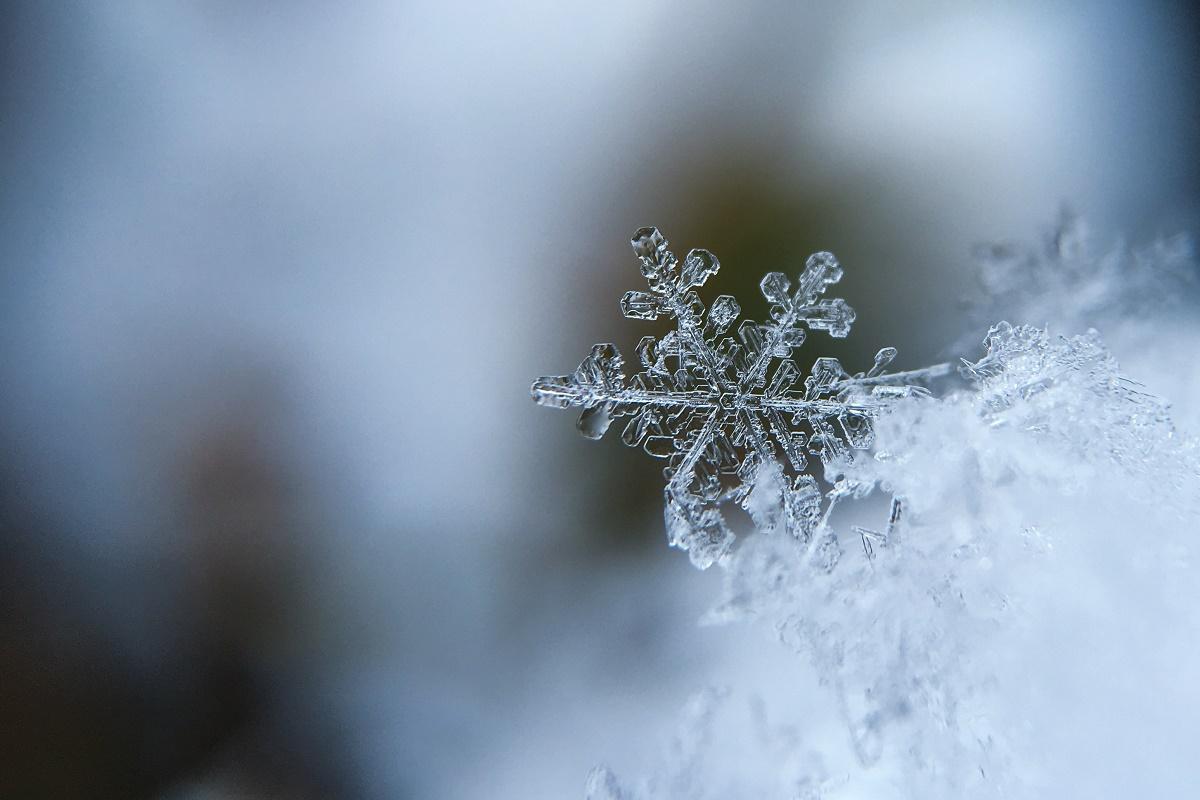 Fotografia macro di un cristallo di neve: le temperature nella Groenlandia orientale sono piuttosto rigide anche nella stagione estiva.