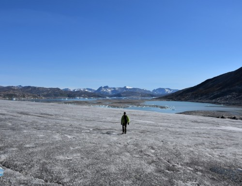 #destinationGreenland: the greenlandic effect of déjà vu
